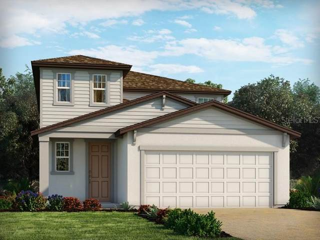 29840 Anahid Drive, Leesburg, FL 34748 (MLS #O5927991) :: Pepine Realty
