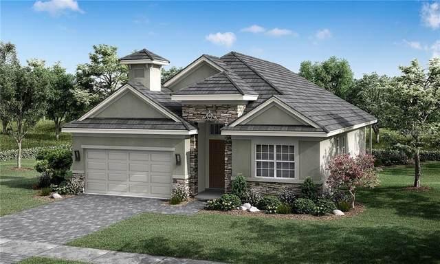 132 Hampton Loop, Davenport, FL 33837 (MLS #O5928083) :: Visionary Properties Inc