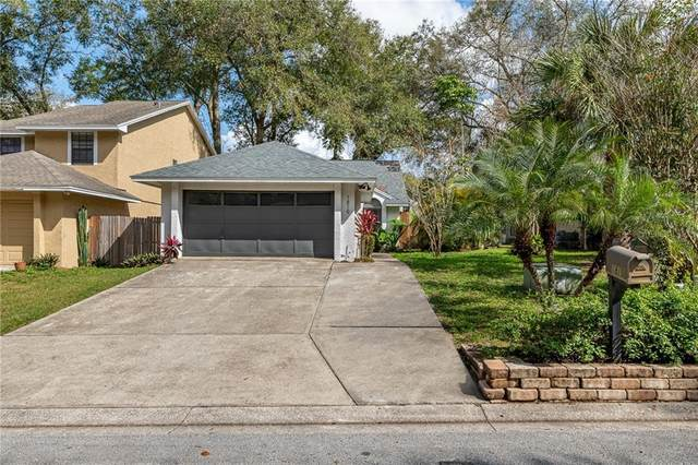 1819 Summit Chase Avenue, Apopka, FL 32703 (MLS #O5928414) :: Young Real Estate