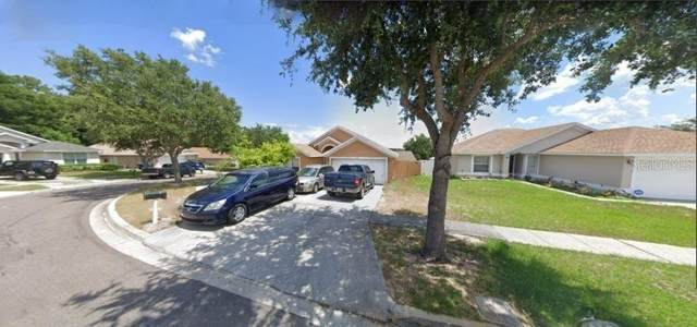 6521 Long Breeze Road, Orlando, FL 32810 (MLS #O5928537) :: Tuscawilla Realty, Inc