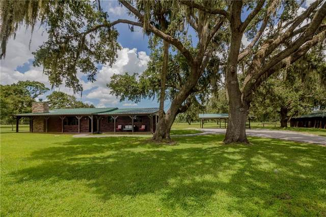 23303 Llewellyn Road, Christmas, FL 32709 (MLS #O5928575) :: Young Real Estate