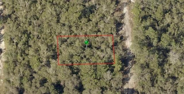 00 Waldor Avenue, Orange City, FL 32763 (MLS #O5928668) :: Armel Real Estate