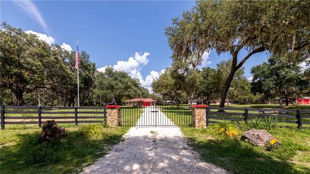 18253 NW 20TH Avenue, Citra, FL 32113 (MLS #O5928916) :: Rabell Realty Group