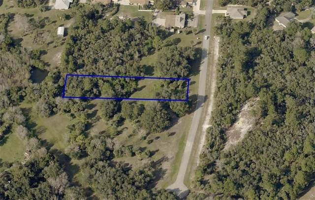 6232 Horsehoe Avenue, Titusville, FL 32780 (MLS #O5929046) :: Premier Home Experts