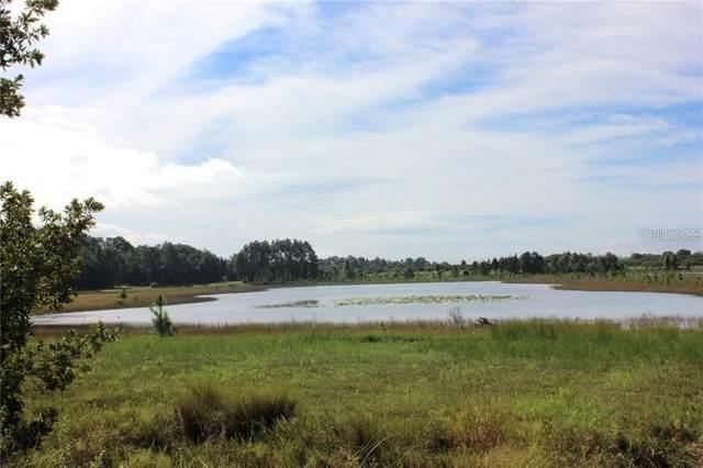 8016 Sergeant Pepper Drive, Howey in the Hills, FL 34737 (MLS #O5929314) :: Vacasa Real Estate