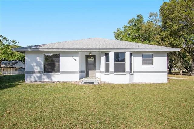 5917 Woodale Drive, Lakeland, FL 33811 (MLS #O5929858) :: The Lersch Group