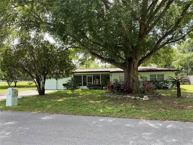 1520 Mink Drive, Apopka, FL 32703 (MLS #O5931404) :: Century 21 Professional Group