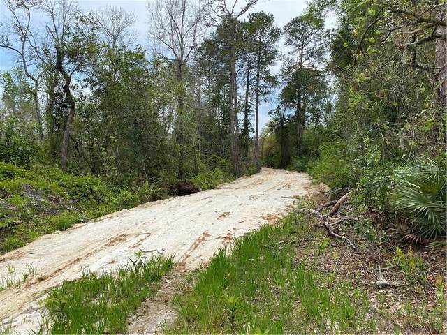 0000 State Road 44, Eustis, FL 32736 (MLS #O5931463) :: Southern Associates Realty LLC