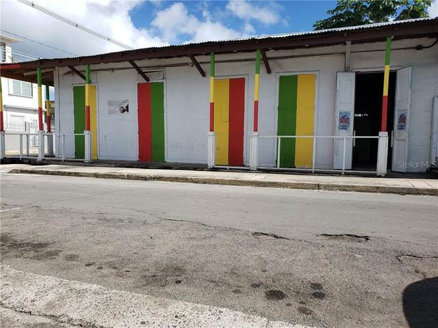 434 Carlos Lebrum, VIEQUES, PR 00765 (MLS #O5932490) :: Bridge Realty Group