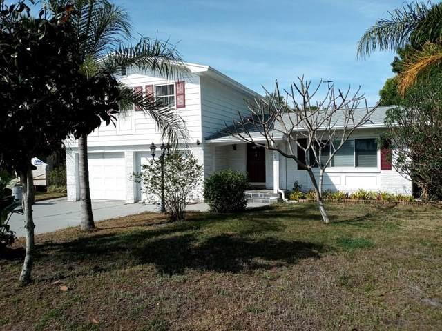 621 Bayshore Drive, Tarpon Springs, FL 34689 (MLS #O5932997) :: The Duncan Duo Team