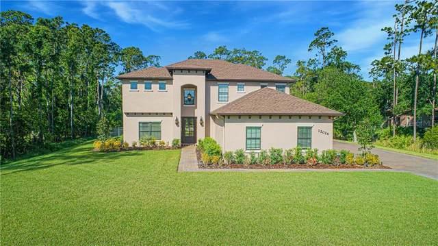12024 Rambling Oak Boulevard, Orlando, FL 32832 (MLS #O5933394) :: Griffin Group