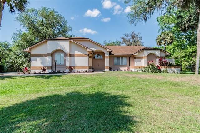 2242 Peachleaf Court, Longwood, FL 32779 (MLS #O5933500) :: Everlane Realty