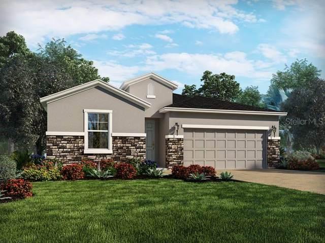 34479 Wynthorne Place, Wesley Chapel, FL 33545 (MLS #O5933800) :: Vacasa Real Estate