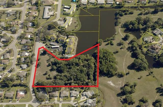 2091 W Lakeview Boulevard, North Fort Myers, FL 33903 (MLS #O5933973) :: Dalton Wade Real Estate Group