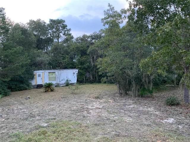 35321 Goose Creek Road, Leesburg, FL 34788 (MLS #O5934248) :: Dalton Wade Real Estate Group