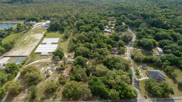 3615 Rock Springs Road, Apopka, FL 32712 (MLS #O5934554) :: Vacasa Real Estate