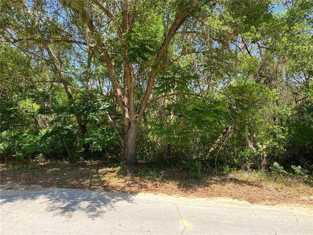 Magnolia Street, Lady Lake, FL 32159 (MLS #O5934656) :: Visionary Properties Inc
