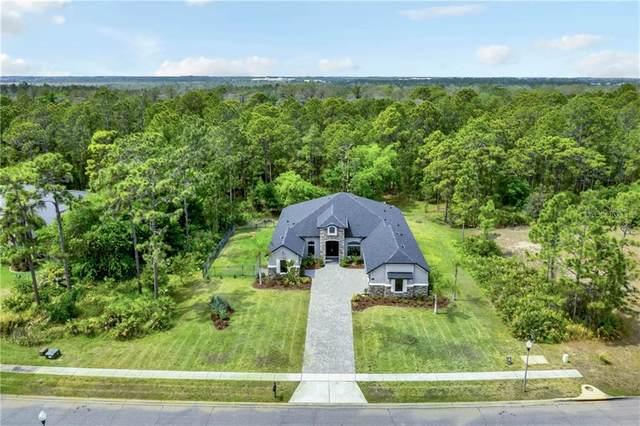 11706 Rambling Oak Boulevard, Orlando, FL 32832 (MLS #O5934819) :: Armel Real Estate