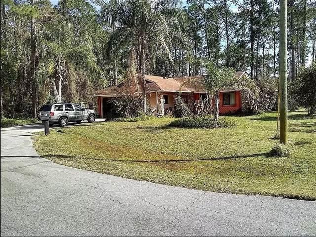 6 Washwick Place, Palm Coast, FL 32164 (MLS #O5934962) :: Griffin Group