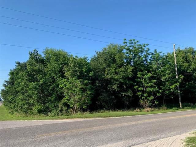 17483 Phil C Peters Road, Winter Garden, FL 34787 (MLS #O5935233) :: The Lersch Group