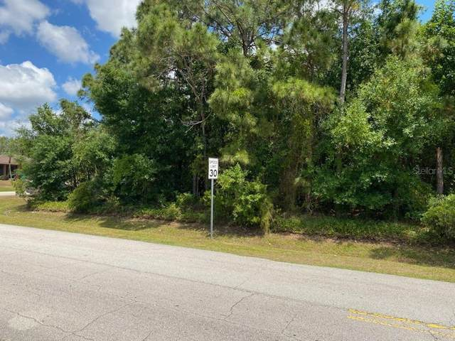 296 SW Grove Avenue, Port Saint Lucie, FL 34983 (MLS #O5935325) :: Zarghami Group