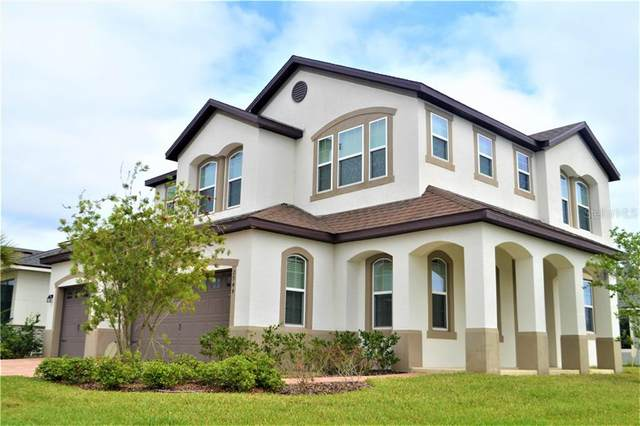 2944 Chantilly Avenue, Kissimmee, FL 34741 (MLS #O5935410) :: Carmena and Associates Realty Group
