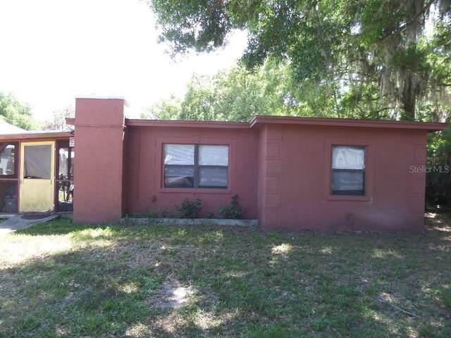 1024 Grant Avenue, Mount Dora, FL 32757 (MLS #O5935411) :: Bob Paulson with Vylla Home