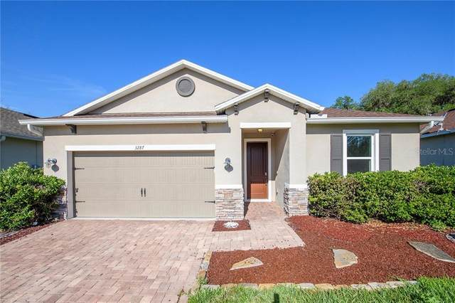 3287 Macintosh Road, Land O Lakes, FL 34639 (MLS #O5935515) :: Team Bohannon Keller Williams, Tampa Properties