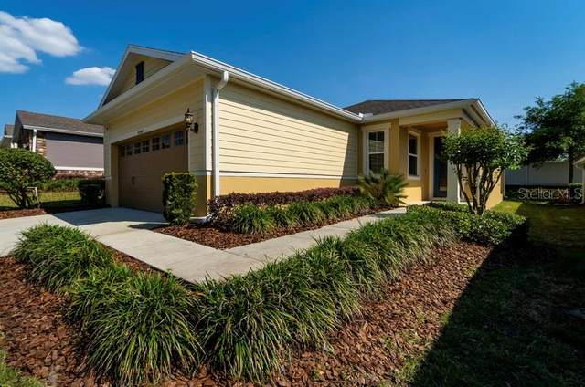 30543 Lipizzan Terrace, Mount Dora, FL 32757 (MLS #O5935636) :: Keller Williams Realty Select