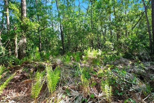 Riverwoods Trail, Chuluota, FL 32766 (MLS #O5935656) :: The Figueroa Team