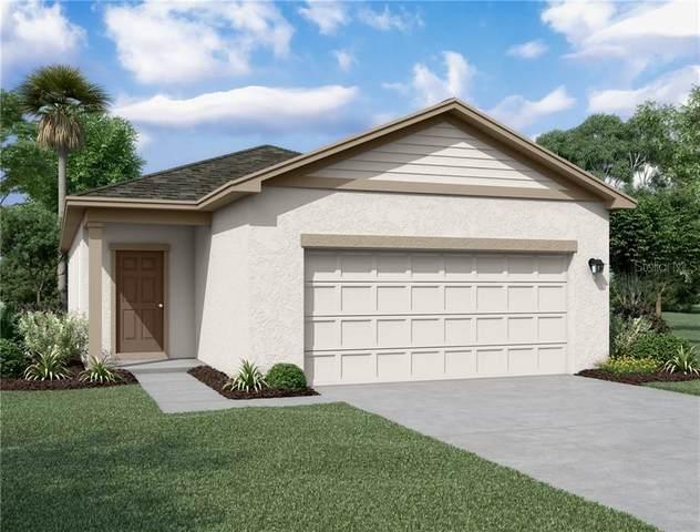 34839 Daisy Meadow Loop, Zephyrhills, FL 33541 (MLS #O5935660) :: Griffin Group