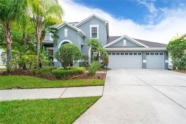6611 Buckingham Palms Way, Tampa, FL 33647 (MLS #O5935798) :: Dalton Wade Real Estate Group
