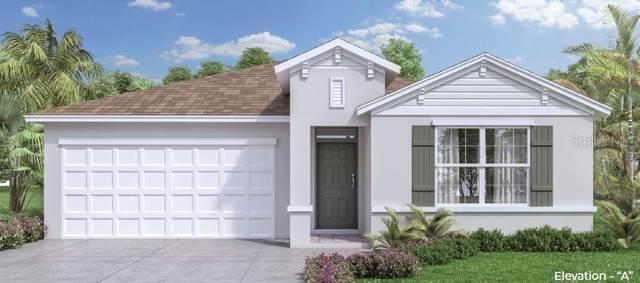 5527 Palomino Drive, Apopka, FL 32712 (MLS #O5936110) :: The Kardosh Team