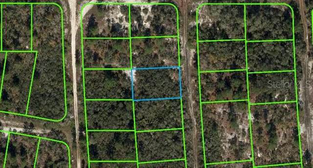 440 Heaven Drive, Lake Placid, FL 33852 (MLS #O5936153) :: Bob Paulson with Vylla Home