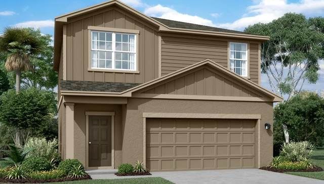 34815 Daisy Meadow Loop, Zephyrhills, FL 33541 (MLS #O5936171) :: Griffin Group