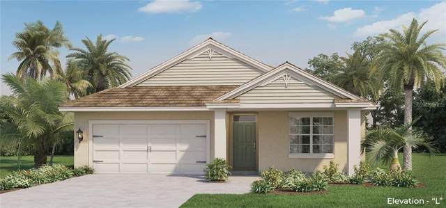 5521 Palomino Place, Apopka, FL 32712 (MLS #O5936538) :: Everlane Realty