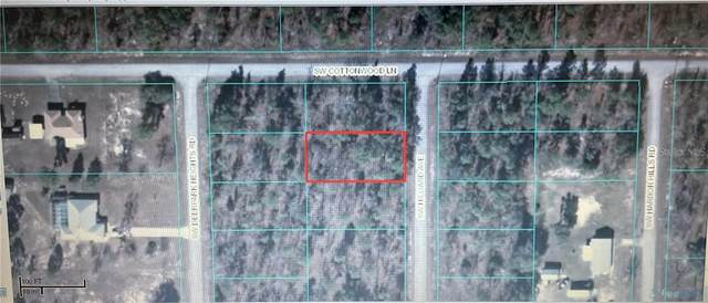 00 SW Sw Hillard Avenue Avenue, Dunnellon, FL 34431 (MLS #O5936918) :: The Lersch Group