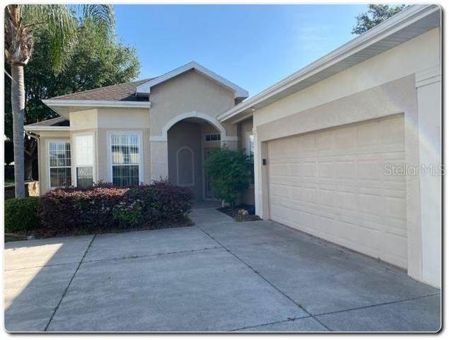 17016 SE 115TH TERRACE Road, Summerfield, FL 34491 (MLS #O5936931) :: Frankenstein Home Team