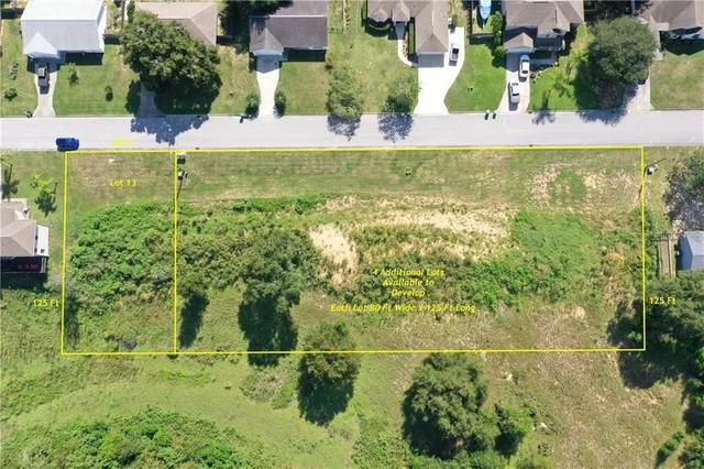 Morningview Drive, Eustis, FL 32726 (MLS #O5937089) :: Visionary Properties Inc