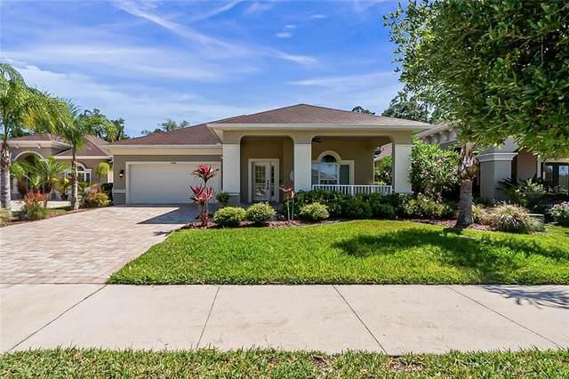 3428 Leonardo Lane, New Smyrna Beach, FL 32168 (MLS #O5937217) :: BuySellLiveFlorida.com