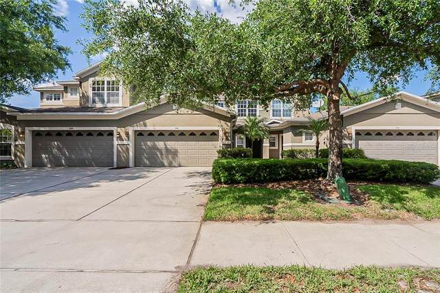 946 Davenwood Court, Ocoee, FL 34761 (MLS #O5937442) :: Armel Real Estate