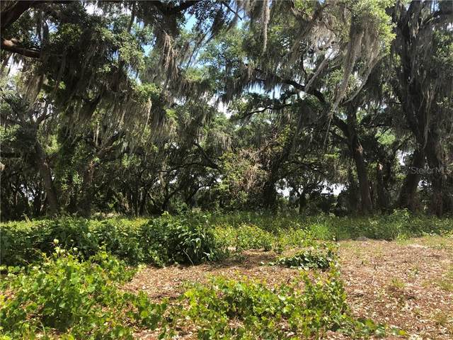 449 Long And Winding Road, Groveland, FL 34737 (MLS #O5937519) :: Everlane Realty