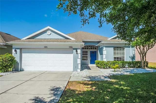 5356 Los Palma Vista Drive, Orlando, FL 32837 (MLS #O5937676) :: Dalton Wade Real Estate Group