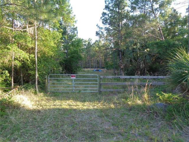 3970 Swamp Deer Rd, New Smyrna Beach, FL 32168 (MLS #O5937688) :: SunCoast Home Experts