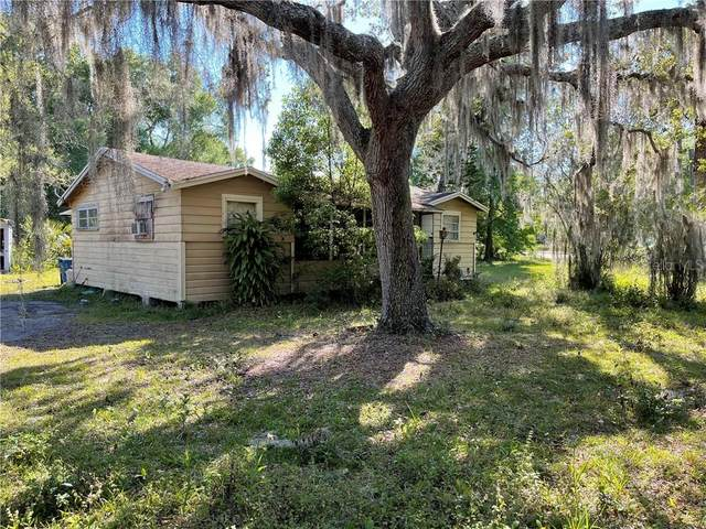 207 Florida Avenue, Osteen, FL 32764 (MLS #O5937756) :: Bridge Realty Group