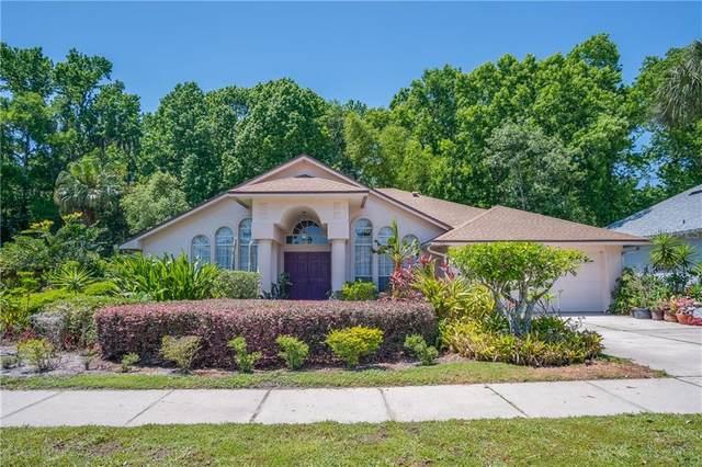 1204 Clinging Vine Place, Winter Springs, FL 32708 (MLS #O5937813) :: Aybar Homes