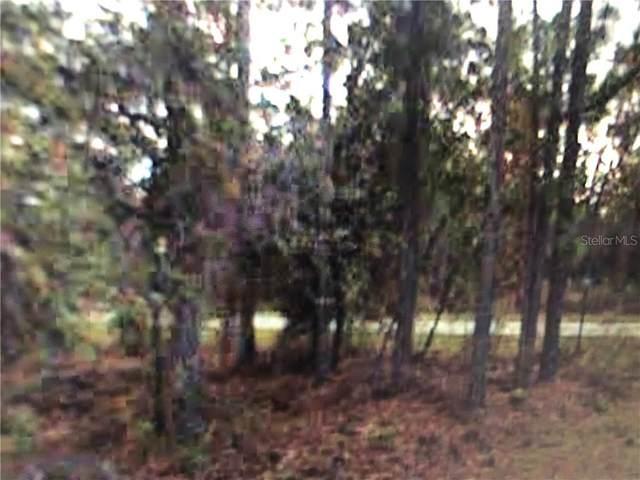 000 NW Mallard Avenue, Dunnellon, FL 34431 (MLS #O5937906) :: Vacasa Real Estate