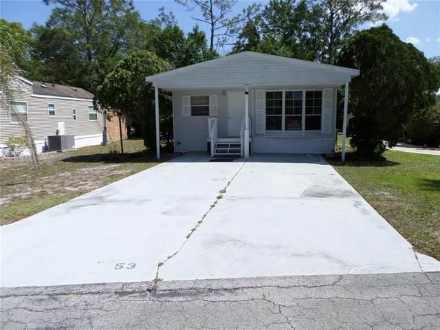 53 Palomino Path, River Ranch, FL 33867 (MLS #O5937997) :: Zarghami Group