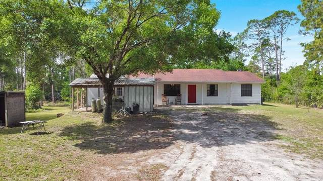 1310 Marsh Fern Road, Mims, FL 32754 (MLS #O5938131) :: Rabell Realty Group