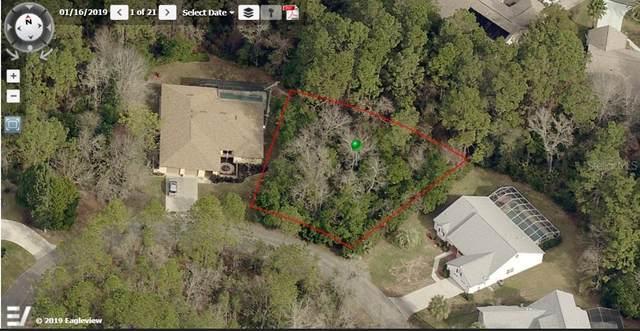 39 Lemington Court, Homosassa, FL 34446 (MLS #O5938149) :: Armel Real Estate
